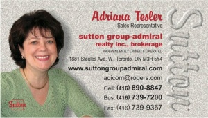 2015 - Adriana Tesler - business card