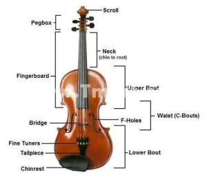 The-construction-of-a-violin